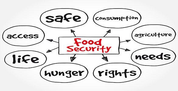 Food Security Diagram